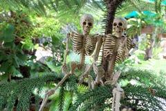 骨骼夫妇在杉树下 免版税库存照片