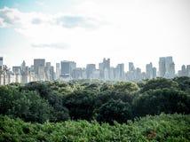 高于中央公园的机盖 免版税库存图片