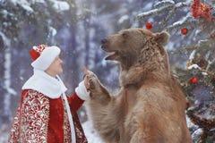 高五在人和棕熊之间 免版税图库摄影