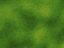 高分辨率绿草纹理 库存照片