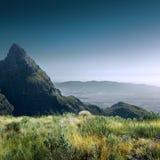 高分辨率美丽的夏天绿色领域和山 免版税库存照片