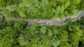 高加索山脉林木空中下来上面视图  库存照片