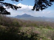 高加索 山 风景 春天 秋天 夏天 美丽 自然 森林 免版税库存图片