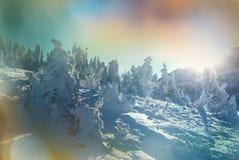 高加索佐治亚gudauri山冬天 免版税库存图片