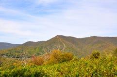 高加索的山麓小丘 免版税图库摄影