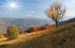 高加索覆盖横向山山shurovky天空ushba 库存照片