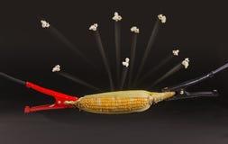 高压玉米花 库存照片
