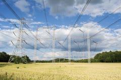 高压输电线在玉米田 库存照片