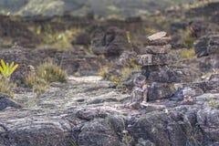 高原Roraima tepui -委内瑞拉的异常的古老岩石, 免版税库存照片