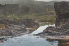 高原Roraima tepui -委内瑞拉的异常的古老岩石, 库存图片