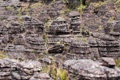 高原Roraima tepui -委内瑞拉,拉美的异常的古老岩石 库存图片