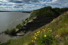 高和陡峭的含沙河岸 库存照片
