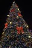 高圣诞树在黑夜背景中 库存图片