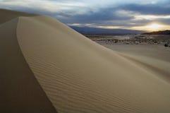 高地山羊与风雨如磐的天空的沙丘 免版税库存图片