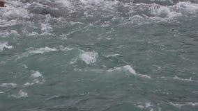 高地河的水表面,自然本底,Kucherla河,阿尔泰山 影视素材