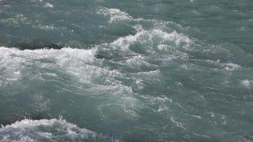 高地河的水表面,自然本底,Kucherla河,阿尔泰山 股票视频