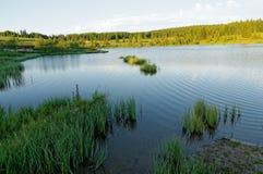 高地湖在清早阳光下 免版税库存图片