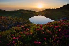 高处山湖在黎明,在田园诗 免版税库存照片