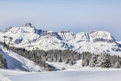 高处滑雪领域 图库摄影