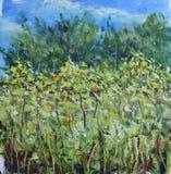 高夏天在草甸,树,天空,油画开花 图库摄影