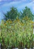 高夏天在草甸,树,天空,油画开花 免版税库存照片