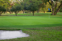 高尔夫球作用 库存照片