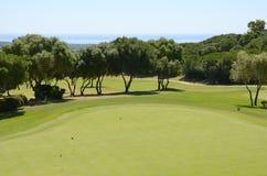 高尔夫球区 免版税库存图片