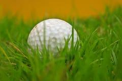 高尔夫球和草。 免版税库存照片