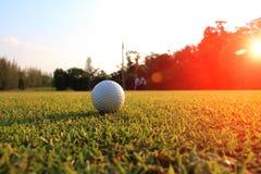 高尔夫球在绿色草坪弄脏看高尔夫球将挖坑的方式的高尔夫球运动员 免版税图库摄影