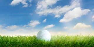 高尔夫球在草在与白色云彩的天空蔚蓝前 免版税库存照片