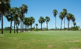 高尔夫球场。 免版税库存图片