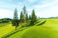 高尔夫球场在乡下 免版税库存图片