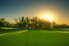 高尔夫球场在乡下 免版税库存照片