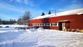 高尔夫球场在冬天 库存照片