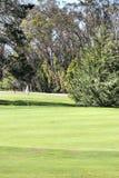 高尔夫球场在加利福尼亚 免版税库存图片