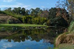 高尔夫球场在科多巴阿根廷 免版税图库摄影