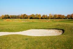 高尔夫球场在Mezhigirya 免版税图库摄影