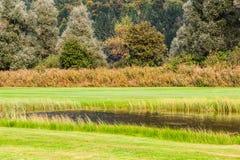 高尔夫球场的池塘 免版税库存照片