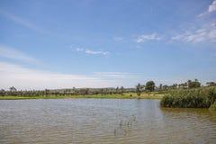 高尔夫球场的湖在蓝天下在一个夏日在西班牙 库存照片