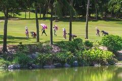 高尔夫球场的高尔夫球运动员在泰国 免版税图库摄影
