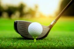 高尔夫球场绿色和高尔夫球关闭在草地 库存照片