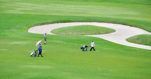 高尔夫球场风景 库存图片