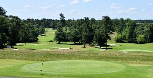 高尔夫球场绿色和危险 图库摄影