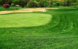 高尔夫球场绿色 免版税库存图片