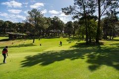 高尔夫球实践和投入 免版税库存照片