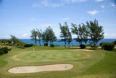 高尔夫球手段 图库摄影