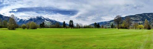高尔夫球手段 库存图片