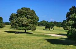 高尔夫球操场 免版税图库摄影