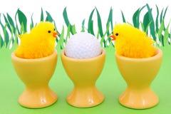 高尔夫球春天 免版税库存图片