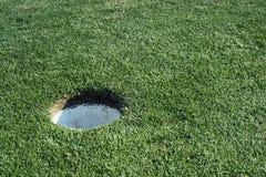 高尔夫球杯子 免版税库存照片